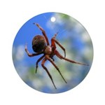 Red Thin Leg Wolf Spider on Web in blue Ornament (