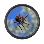 Red Thin Leg Wolf Spider on Web in blue Large Wall