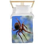 Red Thin Leg Wolf Spider on Web in blue Twin Duvet