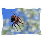 Red Thin Leg Wolf Spider on Web in blue Pillow Cas