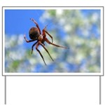 Red Thin Leg Wolf Spider on Web in blue Yard Sign