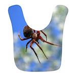 Red Thin Leg Wolf Spider on Web in blue Bib
