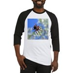 Red Thin Leg Wolf Spider on Web in blue Baseball J