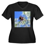 Red Thin Leg Wolf Spider on Web in blue Plus Size