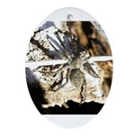 Furry Wolf Spider on Rocks Ornament (Oval)
