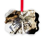 Furry Wolf Spider on Rocks Ornament