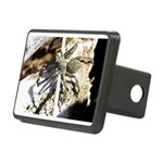 Furry Wolf Spider on Rocks Hitch Cover