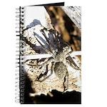 Furry Wolf Spider on Rocks Journal