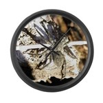 Furry Wolf Spider on Rocks Large Wall Clock