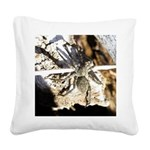 Furry Wolf Spider on Rocks Square Canvas Pillow