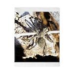 Furry Wolf Spider on Rocks Twin Duvet