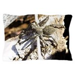 Furry Wolf Spider on Rocks Pillow Case
