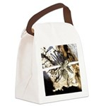 Furry Wolf Spider on Rocks Canvas Lunch Bag