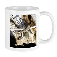 Furry Wolf Spider on Rocks Mugs