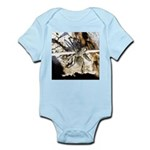 Furry Wolf Spider on Rocks Body Suit