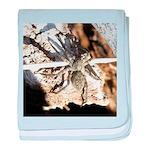 Furry Wolf Spider on Rocks baby blanket