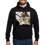 Furry Wolf Spider on Rocks Hoodie