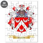 Gosline Puzzle