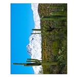 Four Peaks Snow From Desert Trail Small Poster