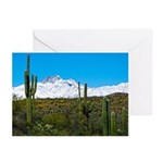 Four Peaks Snow From Desert Trail Greeting Cards