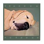 Yellow Labrador Dog Sleeps Tile Coaster