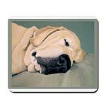 Yellow Labrador Dog Sleeps Mousepad