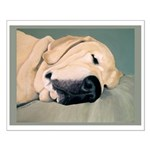 Yellow Labrador Dog Sleeps Small Poster