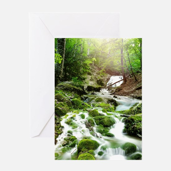 Woodland Stream Greeting Cards