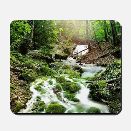 Woodland Stream Mousepad