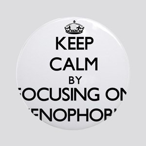 Keep Calm by focusing on Xenophob Ornament (Round)