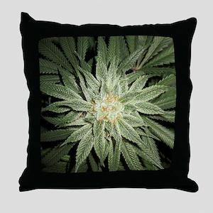 Cannabis Plant Throw Pillow