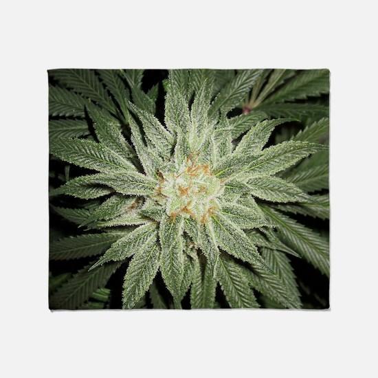 Cannabis Plant Throw Blanket
