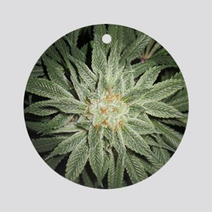 Cannabis Plant Ornament (Round)