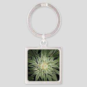 Cannabis Plant Keychains