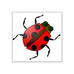 "Ladybug Icon Symbol Square Sticker 3"" X 3&quo"