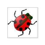 "Ladybug Icon Symbol Square Sticker 3"" X 3&quo"
