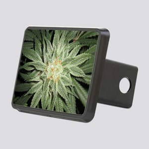 Cannabis Plant Hitch Cover