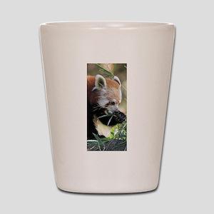 Red Panda 002 Shot Glass