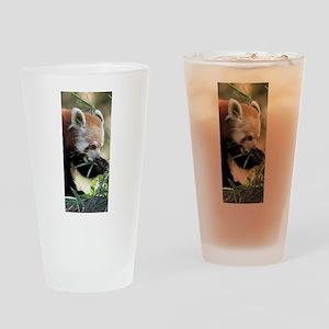 Red Panda 002 Drinking Glass