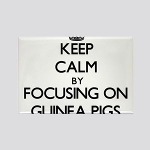 Keep Calm by focusing on Guinea Pigs Magnets