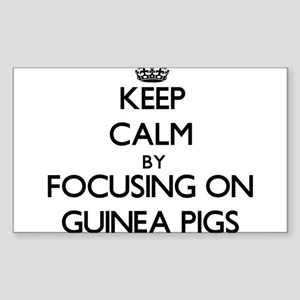 Keep Calm by focusing on Guinea Pigs Sticker