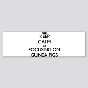 Keep Calm by focusing on Guinea Pig Bumper Sticker
