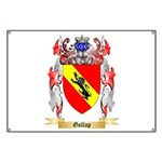 Gollop Banner