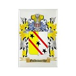 Goldsworthy Rectangle Magnet (100 pack)