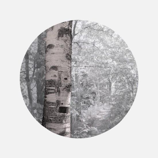 """Birch Tree In Forest 3.5"""" Button"""