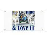 Ride & Love IT Banner