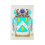Goldsbro Rectangle Magnet (100 pack)