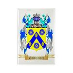 Goldhirisch Rectangle Magnet (100 pack)