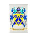 Goldfajn Rectangle Magnet (10 pack)