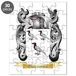 Goivannacci Puzzle
